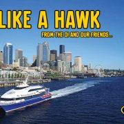 see like a hawk mayfair optometric